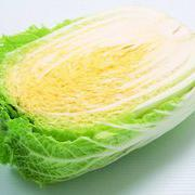 秋宝白菜种子