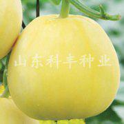 山科蜜一号甜瓜种子
