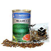 中科茂华水果蔬菜种子抗重茬懒汉西瓜种子懒汉神龙大果型免整枝