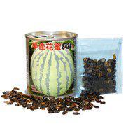 中科茂华水果蔬菜种子公司早佳花蜜8424西瓜種子早熟麒麟西瓜种子