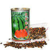茂华牌 蔬菜水果种子杂交西瓜种子 茂华欣甜 替代京欣类西瓜种子
