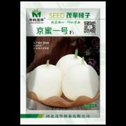中科茂华水果蔬菜种子中科蜜一号甜瓜种子厚皮东方蜜高糖甜瓜种籽