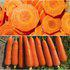 茂华蔬菜种子三红胡萝卜种子韩国红福红心七寸参基地专用