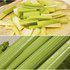 中科茂华蔬菜种子PS-1皇后西芹种子黄绿色芹菜种子实心高产