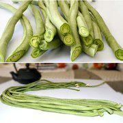 中科茂华长豇七号豇豆种子长豆角种子嫩绿条高产抗病条长