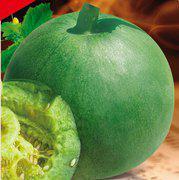 翠香玉甜瓜种子