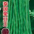 泰国架豆王芸豆种子豆角种子
