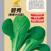 碧秀小白菜种子