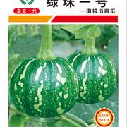 绿珠一号小南瓜种子