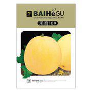 禾玉109香瓜种子 甜瓜种子