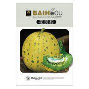 花斑豹香瓜种子 甜瓜种子